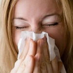 Glossary of flu terms in German and English