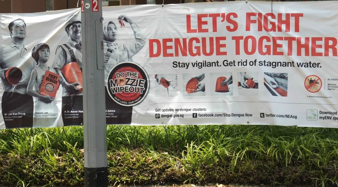 Dengue: a glossary of terms in German and English